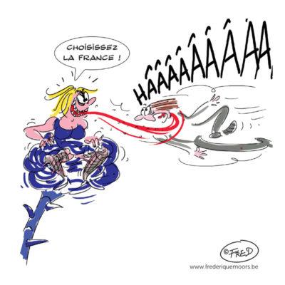 Marine Le Pen - élections 2017